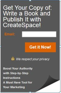 Example of a subscribe opt-in.