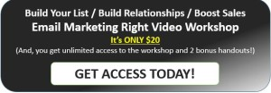 Step-by-step email marketing video workshop.
